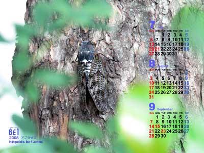 毎月更新♪カレンダー付き壁紙 ブログコミュニティ イラストブログ