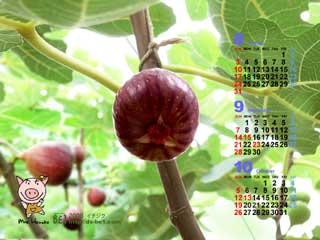 毎月更新♪カレンダー付き壁紙 ブログコミュニティ イラストブログ村
