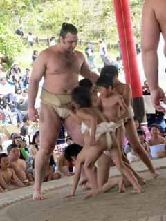 相撲(大相撲) ブログコミュニティ - 格闘技ブログ村