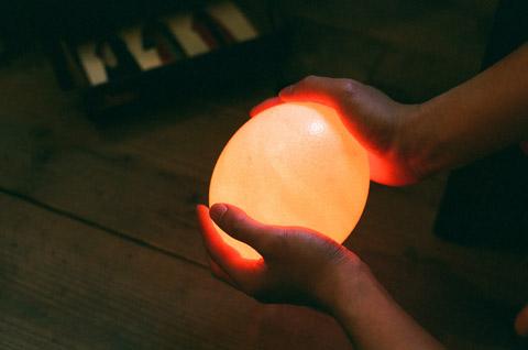 だちょうの卵の電気