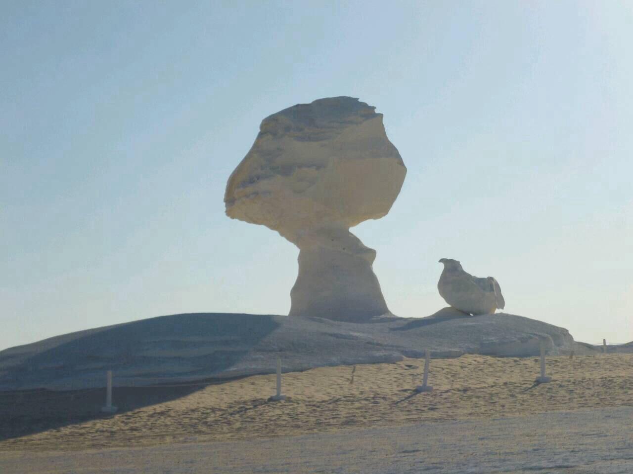 白砂漠 キノコ岩