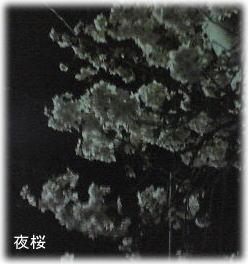 20070329-06