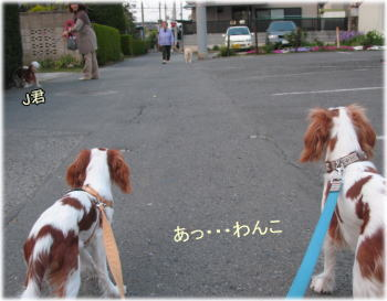 20080417-04