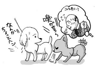 犬 チワワ 吠える 新宿 新宿御苑 治った 治る なおった 挨拶 吠える犬 吠え 宿泊 ペット ペットと 犬と dog ガウ ガウリン 犬と旅行