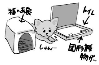 チワワ トイレ 粗相 動かない 困る 停止 漫画 マンガ 犬の 犬 いぬ まんが イラスト お尻 ウンチ うんち
