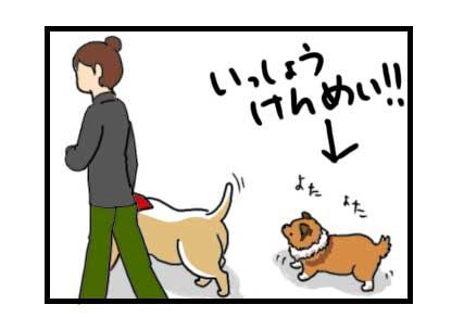 かるた 犬かるた  漫画 イラスト 絵 犬の漫画 犬漫画 manga Cartoon コリー