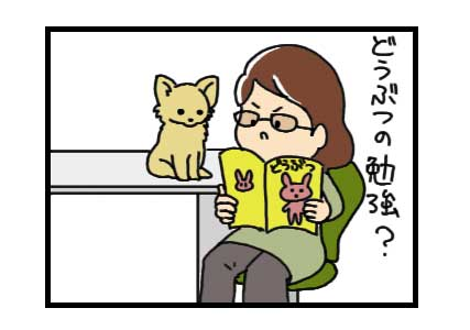 チワワ Chihuahua 犬 吠える ガウリン 福 吠 漫画 イラスト 絵 犬の漫画 犬漫画 manga Cartoon 管理士 愛玩動物