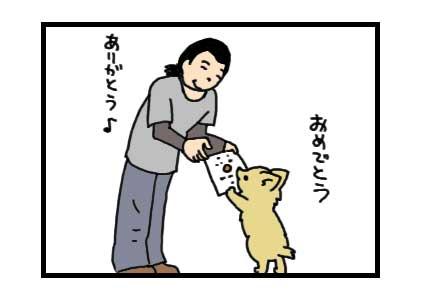 チワワ 福 おめでとう 賞状