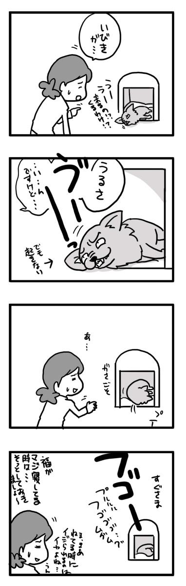 いびき 鼾 チワワ Chihuahua 犬 吠える ガウリン 福 吠 漫画 イラスト 絵 犬の漫画 犬漫画 manga Cartoon
