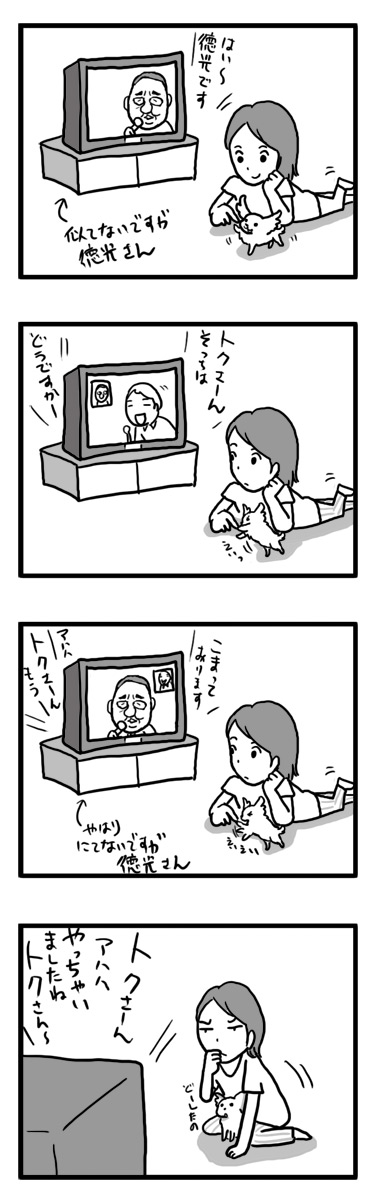 トク 徳光さん 犬 子犬