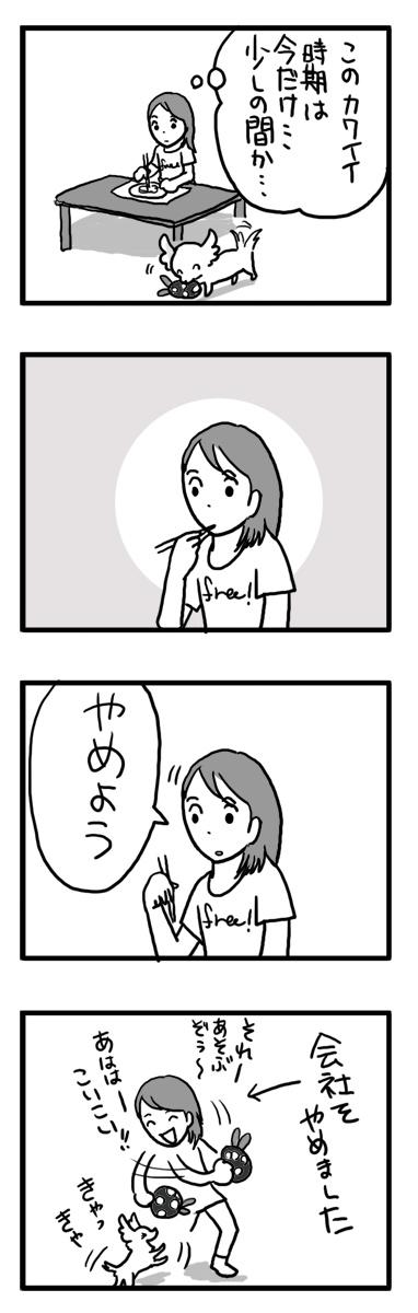 トク 子犬 ルミ 漫画 マンガ スピッツ マルチーズ