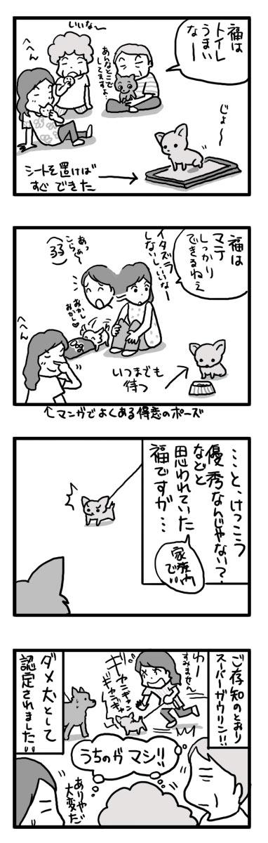 福 チワワ しつけ ガウリン 吠える マンガ 漫画