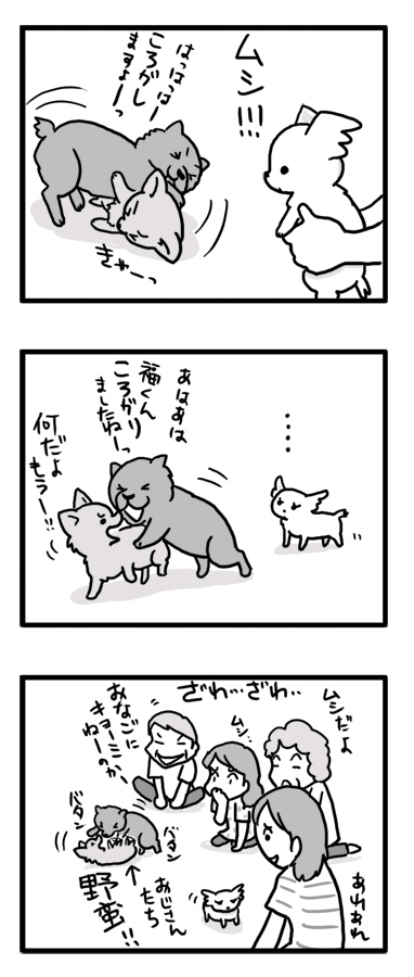 ベイビー トク 小犬 マンガ 漫画