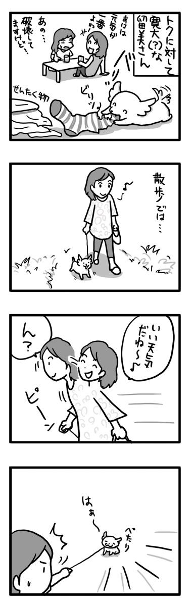 トク 散歩 ワガママ スピッツ マルチーズ 漫画 マンガ