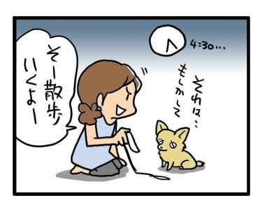 散歩 サマータイム 早朝 公園 ワンコ 犬 チワワ 漫画 マンガ