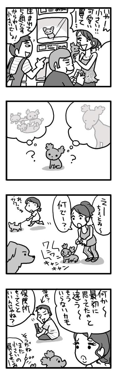 パブリック コメント 環境省 犬 ペット 保健所 漫画 マンガ
