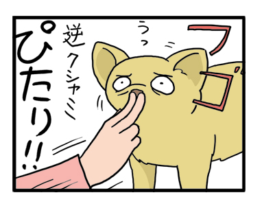 逆クシャミ ぎゃく クシャミ チワワ 苦しい むせる ゲー 止め 止める 漫画 マンガ まんが