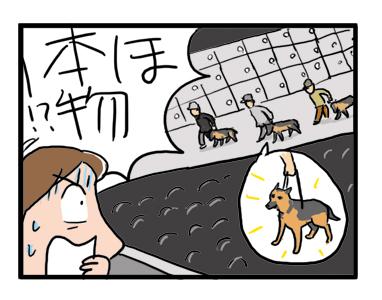 盲導犬 舞台 蜷川 文化村 シェパード まんが イラスト