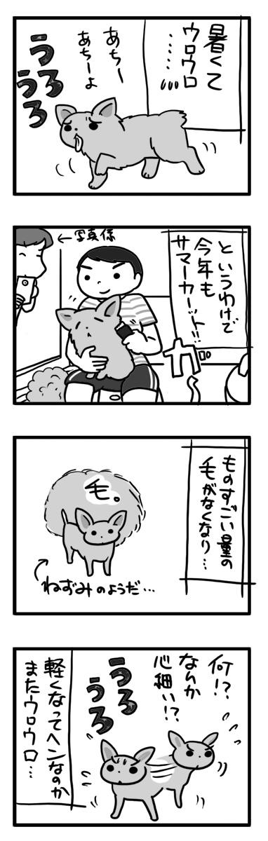 毛 サマーカット 夏 犬 チワワ ロング コート まんが 漫画 マンガ