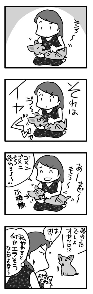 歯磨き 舐め 下手 ハミガキ 犬 チワワ まんが 漫画 マンガ