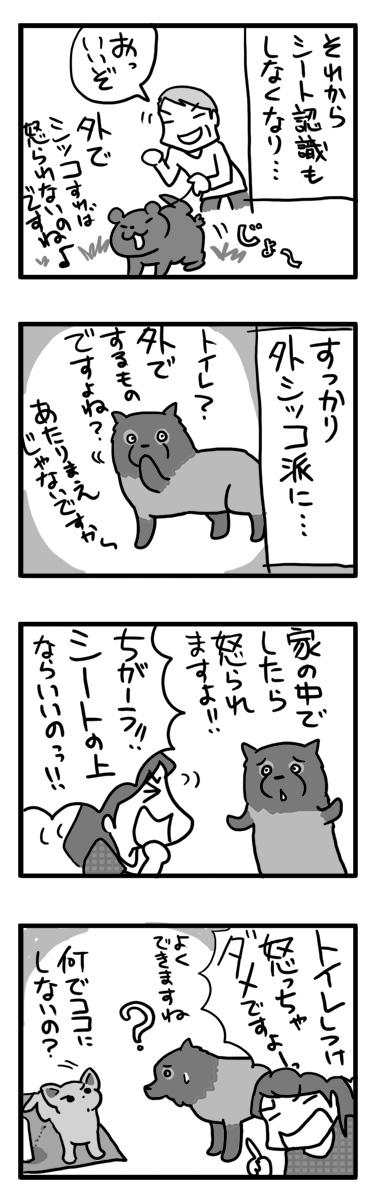 トイレ しつけ 失敗 怒 怖 犬 まんが マンガ 漫画