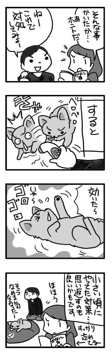 舐める ナメ 治し なおす 犬 チワワ まんが 漫画 マンガ
