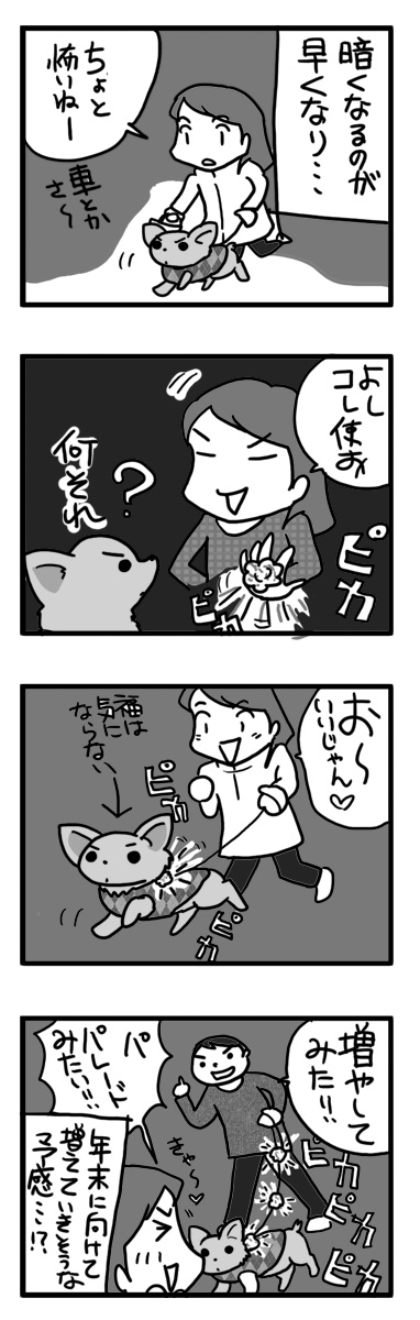 夜 散歩 ピカピカ 夜道 まんが 漫画 マンガ 犬 チワワ