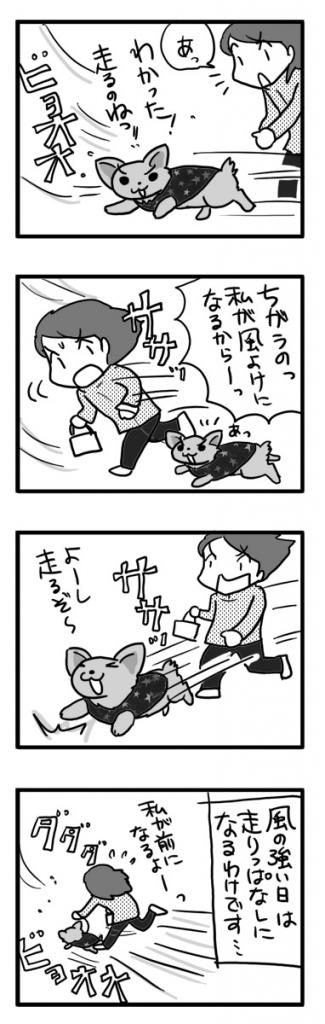 風 強い 強風 散歩 犬 チワワ 目 まんが 漫画 マンガ