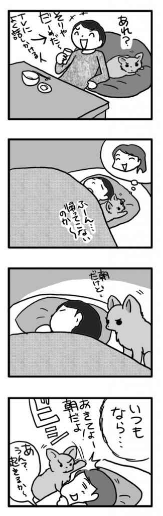 男 オス 犬 夫 留守番 2人 チワワ ぼっち まんが 漫画 マンガ