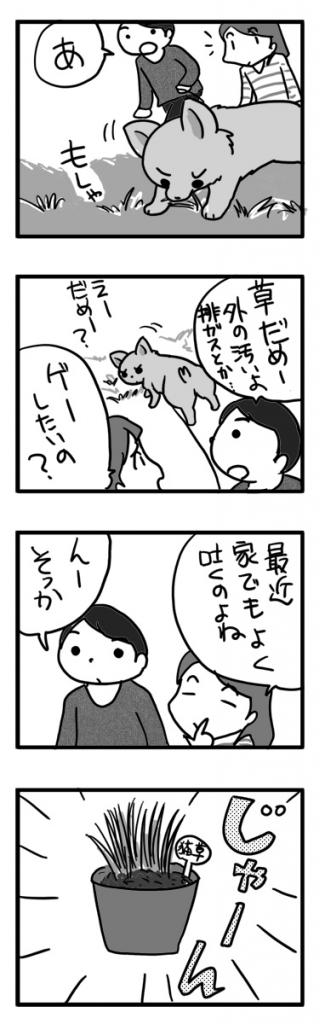 猫草 毛玉 犬 チワワ 吐く 草 食べる まんが 漫画 マンガ