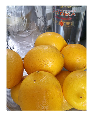 レモン 国産 無農薬 リモンチェッロ 家 酒