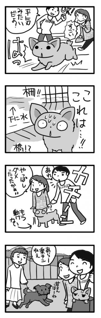 宮ヶ瀬ダム 吊り橋 犬 わんこ 船 関東 ダム 広場 まんが あ漫画 マンガ