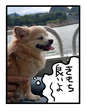 宮が瀬ダム みやがせ 多摩 中央線 都 近郊 近い ダム だむ 犬 チワワ