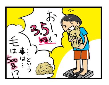 体重 犬 計り 量 性格 マンガ 漫画 イラスト