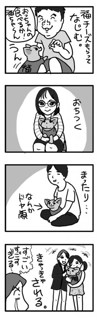 バーベ なじむ 吠え 犬 チワワ ガウ 福 まんが 漫画 マンガ