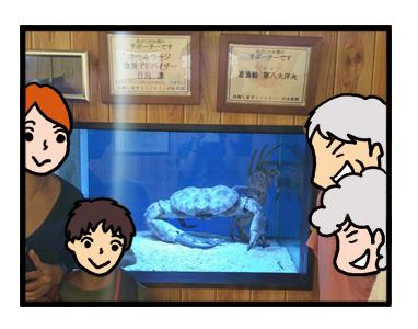 すさみ エビ 海老 カニ 蟹 水族館 珍