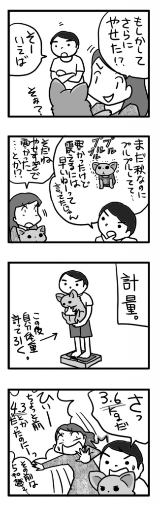 ダイエット 犬 チワワ 痩せ ロイヤル 洋服 服 まんが 漫画 マンガ わんこ ワンコ