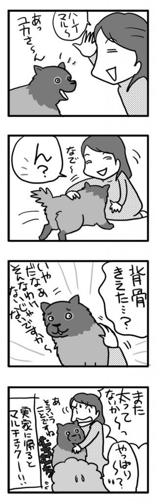 マル ポメ 老人 太 犬 わんこ 漫画 マンガ まんが イラスト