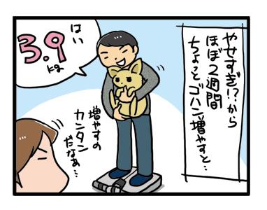 体重 ダイエット 減量 フード 犬 漫画 イラスト まんが