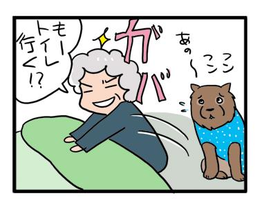 深夜 老犬 夜 トイレ おしっこ 散歩 老 まんが 漫画 マンガ 痴
