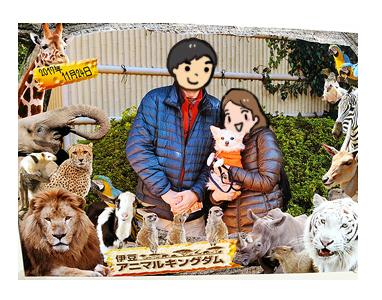 アニマル キングダム 動物 犬 わんこ 連れ 動物園 記念