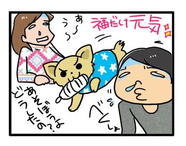 18 風邪 バレンタイン 犬 元気 イラスト 漫画 マンガ