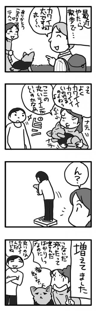 体重計 散歩 丸い チワワ 老齢 まんが 漫画 マンガ