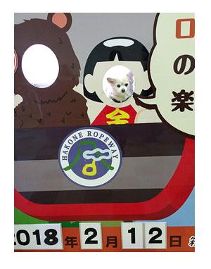 箱根 犬 顔 ハメ 写真