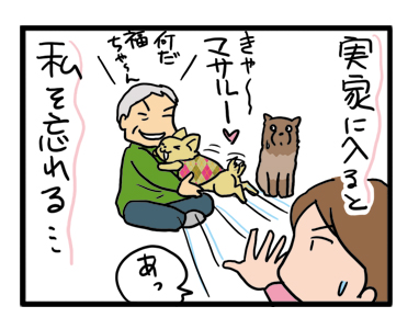実家 親 老 犬 預け 親 チワワ ポメ まんが 漫画 マンガ