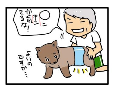マル オムツ おむつ マナー パンツ シッコ おもらし 犬 老犬 まんが 漫画 イラ