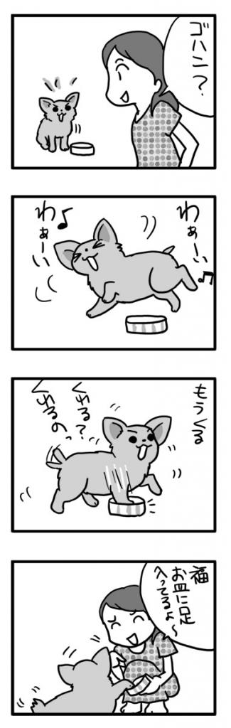 皿 犬 ゴハン ご飯 足 興奮 嬉 テンション 漫画 マンガ まんが