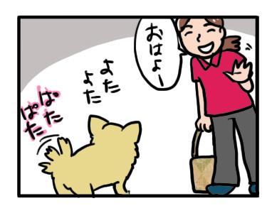 留守番 チワワ 福 犬 ペット シッター 自宅 旅行 老犬 介護 ケアペッツ まんが マンガ