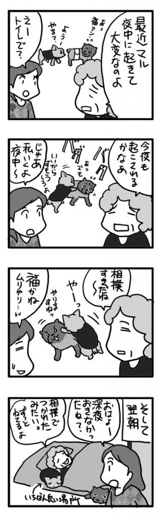 相撲 犬 チワワ ポメ 睡眠 障害 相撲 運動 まんが 漫画 老人 マンガ