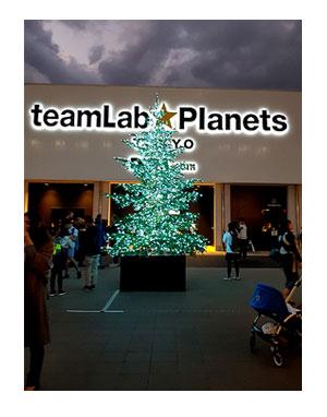 ラボ チームラボ teamLab Planets プラネット 東京 アート インスタ 水 豊洲